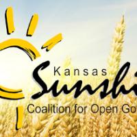sunshine coalition logo